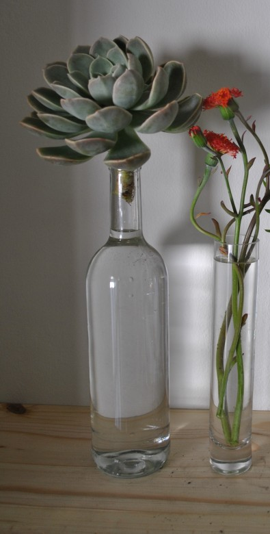 Clear large glass bottles