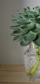 Small geometric bottle